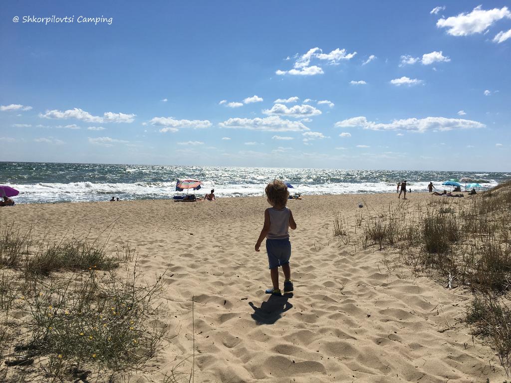 kid to the beach