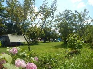 Camping De Oude Wilg, Cârța